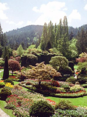 Butchart-Gardens-1