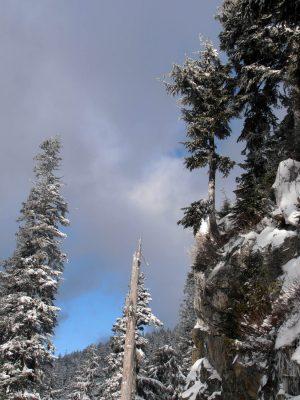 Dam-Mountain-Trail-4
